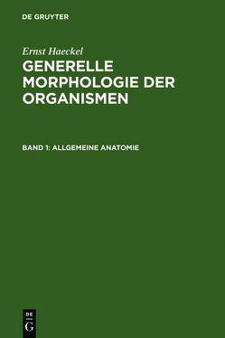 Generelle Morphologie der Organismen von Haeckel,  Ernst