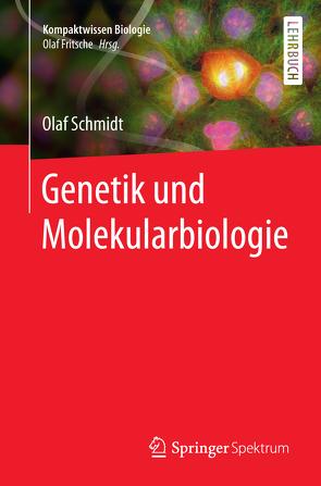 Genetik und Molekularbiologie von Lay,  Martin, Schmidt,  Olaf