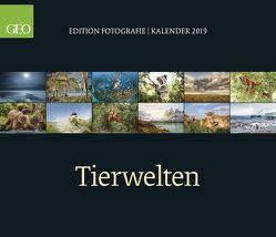 GEO Edition: Tierwelten 2019
