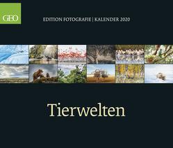 GEO Edition: Tierwelten 2020