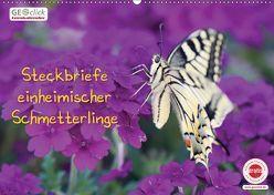 GEOclick Lernkalender: Steckbriefe einheimischer Schmetterlinge (Wandkalender 2019 DIN A2 quer) von Feske,  Klaus