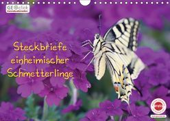 GEOclick Lernkalender: Steckbriefe einheimischer Schmetterlinge (Wandkalender 2019 DIN A4 quer) von Feske,  Klaus