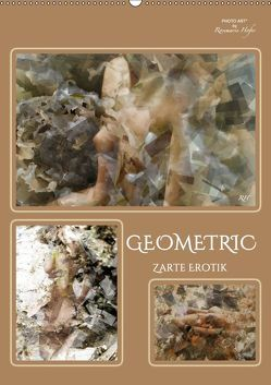 GEOMETRIC Zarte Erotik (Wandkalender 2019 DIN A2 hoch) von Hofer,  Rosemarie