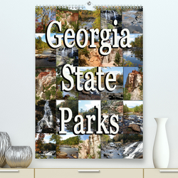 Georgia State Parks (Premium, hochwertiger DIN A2 Wandkalender 2020, Kunstdruck in Hochglanz) von Schwarz,  Sylvia