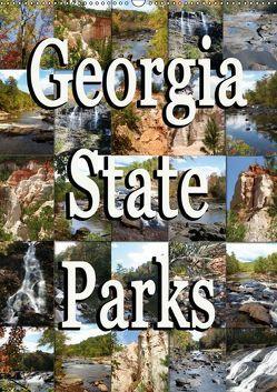 Georgia State Parks (Wandkalender 2019 DIN A2 hoch) von Schwarz,  Sylvia