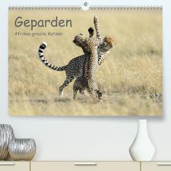 Geparden – Afrikas grazile Katzen (Premium, hochwertiger DIN A2 Wandkalender 2020, Kunstdruck in Hochglanz) von Jürs,  Thorsten