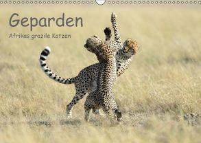Geparden – Afrikas grazile Katzen (Wandkalender 2018 DIN A3 quer) von Jürs,  Thorsten