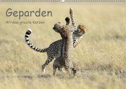 Geparden – Afrikas grazile Katzen (Wandkalender 2019 DIN A2 quer) von Jürs,  Thorsten
