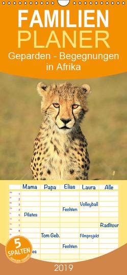 Geparden – Begegnungen in Afrika – Familienplaner hoch (Wandkalender 2019 , 21 cm x 45 cm, hoch) von Herzog,  Michael