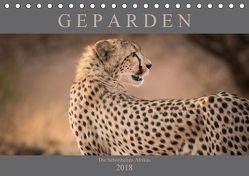 Geparden – Die Schönheiten Afrikas (Tischkalender 2018 DIN A5 quer) von Pavlowsky,  Markus