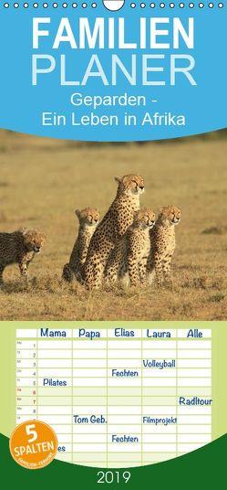 Geparden – Ein Leben in Afrika – Familienplaner hoch (Wandkalender 2019 , 21 cm x 45 cm, hoch) von Herzog,  Michael