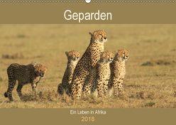 Geparden – Ein Leben in Afrika (Wandkalender 2018 DIN A2 quer) von Herzog,  Michael
