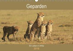 Geparden – Ein Leben in Afrika (Wandkalender 2018 DIN A3 quer) von Herzog,  Michael