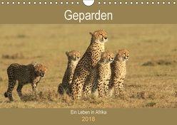 Geparden – Ein Leben in Afrika (Wandkalender 2018 DIN A4 quer) von Herzog,  Michael