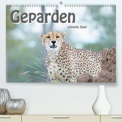 Geparden – schnelle Jäger (Premium, hochwertiger DIN A2 Wandkalender 2020, Kunstdruck in Hochglanz) von Styppa,  Robert