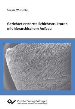 Gerichtet erstarrte Schichtstrukturen mit hierarchischem Aufbau von Wienecke,  Soenke