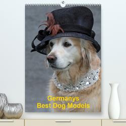 Germanys Best Dog Models – gestylte Labrador und Golden Retriever (Premium, hochwertiger DIN A2 Wandkalender 2021, Kunstdruck in Hochglanz) von Voigt-Papke,  Gabriele