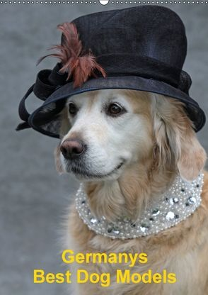 Germanys Best Dog Models – gestylte Labrador und Golden Retriever (Wandkalender 2018 DIN A2 hoch) von Voigt-Papke,  Gabriele