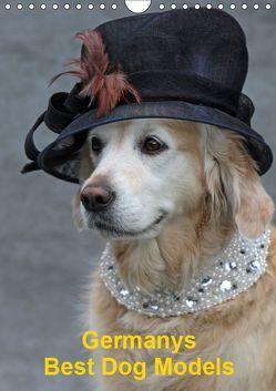 Germanys Best Dog Models – gestylte Labrador und Golden Retriever (Wandkalender 2019 DIN A4 hoch) von Voigt-Papke,  Gabriele