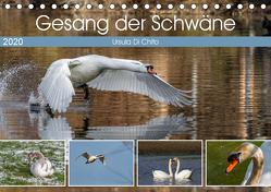 Gesang der Schwäne (Tischkalender 2020 DIN A5 quer) von Di Chito,  Ursula
