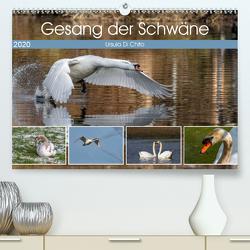 Gesang der Schwäne (Premium, hochwertiger DIN A2 Wandkalender 2020, Kunstdruck in Hochglanz) von Di Chito,  Ursula