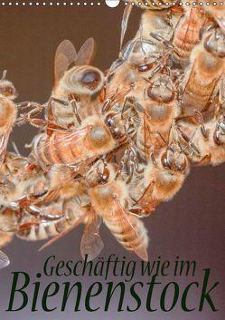 Geschäftig wie im Bienenstock (Wandkalender 2018 DIN A3 hoch) von Bangert,  Mark