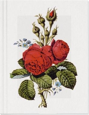 Geschichte der Rose Großes Notizheft (A5) Motiv Moosrose