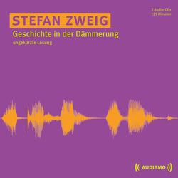 Geschichte in der Dämmerung von Audiamo, Gabriel,  Schett, Zweig,  Stefan