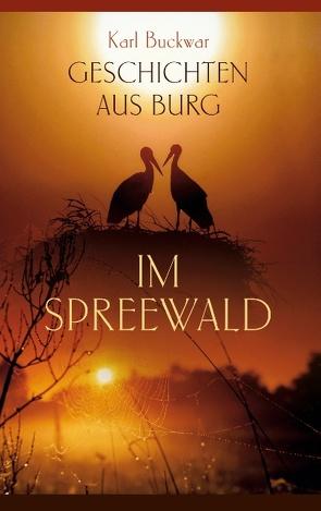 Geschichten aus Burg im Spreewald von Buckwar,  Karl