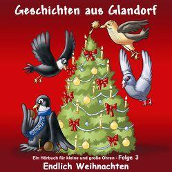 Geschichten aus Glandorf von Andiel,  Gerd