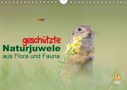 geschützt Naturjuwele aus Flora und Fauna (Wandkalender 2018 DIN A4 quer) von Petzl,  Perdita