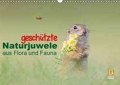 geschützt Naturjuwele aus Flora und Fauna (Wandkalender 2019 DIN A3 quer) von Petzl,  Perdita