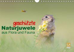 geschützt Naturjuwele aus Flora und Fauna (Wandkalender 2019 DIN A4 quer) von Petzl,  Perdita