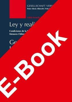 Gesetz und Lebenswirklichkeit von Aranda Aliaga,  Pablo