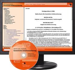 Gesetzliche Unfallversicherung – bei Kombibezug Print und CD-ROM von Bereiter-Hahn,  Werner, Mehrtens,  Gerhard