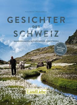 Gesichter der Schweiz von Bamert,  Franz, Heinze,  Winfried