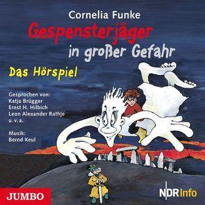 Gespensterjäger in großer Gefahr von Funke,  Cornelia