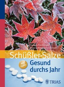Gesund durchs Jahr mit Schüßler-Salzen von Feichtinger,  Thomas, Niedan-Feichtinger,  Susana