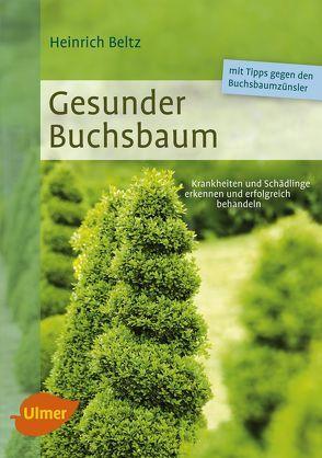 Gesunder Buchsbaum von Beltz,  Heinrich