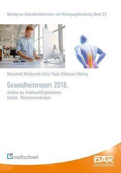 Gesundheitsreport 2018 von Hildebrandt,  Susanne, Marschall,  Jörg, Nolting,  Hans-Dieter, Sörensen,  Jelena, Storm,  Andreas, Tisch,  Thorsten, Zich,  Karsten