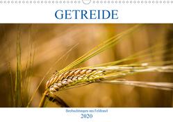 Getreide – Beobachtungen am Feldrand (Wandkalender 2020 DIN A3 quer) von von Kitzing,  Gero
