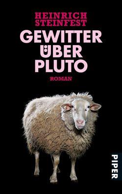 Gewitter über Pluto von Steinfest,  Heinrich