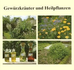 Gewürzkräuter und Heilpflanzen von Hohenberger,  Eleonore, Votteler,  Willi