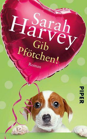 Gib Pfötchen! von Harvey,  Sarah, Heimburger,  Marieke