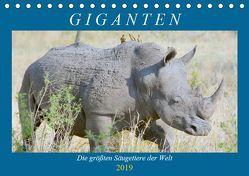 Giganten. Die größten Säugetiere der Welt (Tischkalender 2019 DIN A5 quer) von Hurley,  Rose