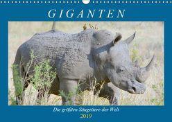 Giganten. Die größten Säugetiere der Welt (Wandkalender 2019 DIN A3 quer) von Hurley,  Rose