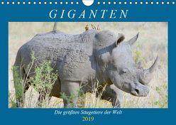 Giganten. Die größten Säugetiere der Welt (Wandkalender 2019 DIN A4 quer) von Hurley,  Rose