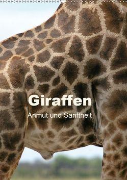 Giraffen – Anmut und Sanftheit (Wandkalender 2019 DIN A2 hoch)