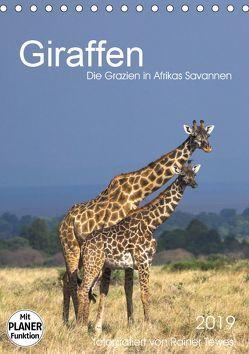 Giraffen – Die Grazien in Afrikas Savannen (Tischkalender 2019 DIN A5 hoch) von Tewes,  Rainer