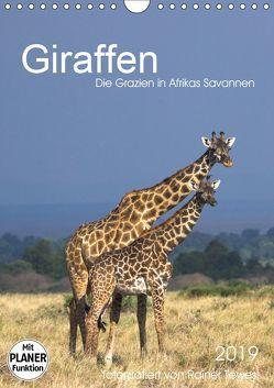 Giraffen – Die Grazien in Afrikas Savannen (Wandkalender 2019 DIN A4 hoch) von Tewes,  Rainer